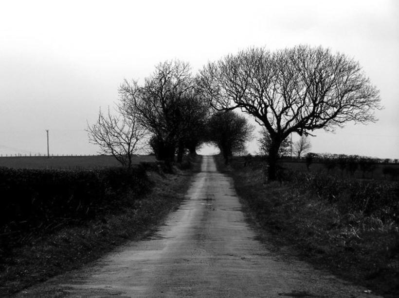 douglas lane gibbets hill
